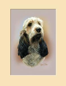 Original Basset Griffon Vendeen Head Study Painting