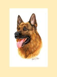 Original German Shepherd Painting by Robert J. May