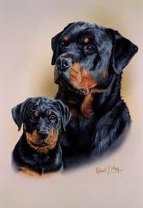 Rottweiler & Pup Print RMDH125