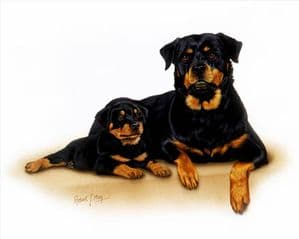 Signed Rottweiler & Pup Print