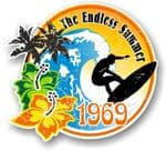 Aged The Endless Summer 1969 Dated Surfing Surfer Design Vinyl Car sticker decal 100x90mm