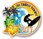 Aged The Endless Summer 1977 Dated Surfing Surfer Design Vinyl Car sticker decal 100x90mm
