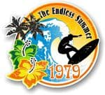 Aged The Endless Summer 1979 Dated Surfing Surfer Design Vinyl Car sticker decal 100x90mm