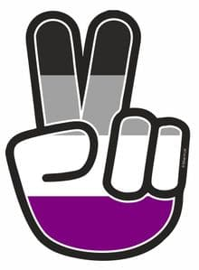Hippy Style PEACE Hand With LGBT Asexual Pride Flag Motif External Vinyl Car Sticker 90x65mm