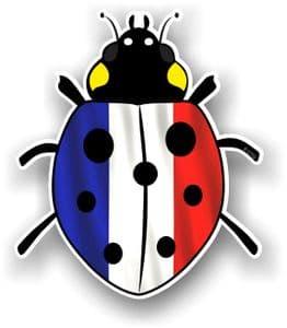 Ladybird Bug Design With France French Flag Motif External Vinyl Car Sticker 90x105mm