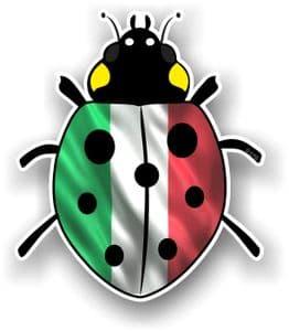 Ladybird Bug Design With Italy Italian Flag Motif External Vinyl Car Sticker 90x105mm