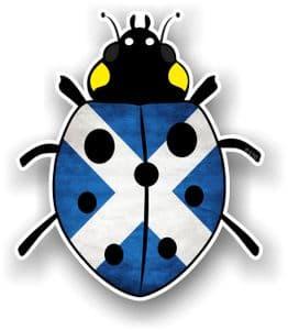 Ladybird Bug Design With Scotland Scottish Saltire Flag Motif External Vinyl Car Sticker 90x105mm
