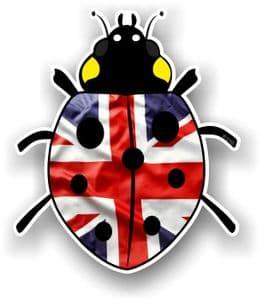 Ladybird Bug Design With UK Union Jack British Flag Motif External Vinyl Car Sticker 90x105mm