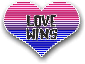 LGBT Heart With Bisexual Pride Love Wins Motif Vinyl Car Sticker Decal 125x90mm