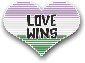 LGBT Heart With Genderqueer Pride Love Wins Motif Vinyl Car Sticker Decal 125x90mm