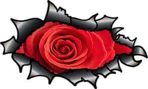 Ripped Torn Carbon Fibre Fiber Design With Beautiful Red Rose Motif External Vinyl Car Sticker 150x90mm
