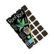 Root Riot Tray Of 24 Cubes